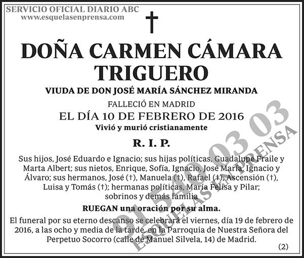 Carmen Cámara Triguero